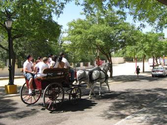 Feria Estepa 2011 03