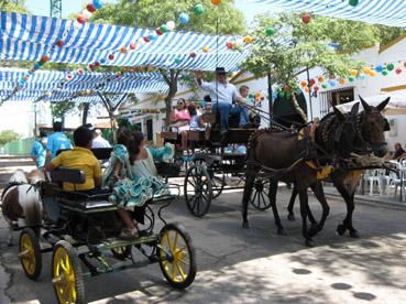 Feria Estepa 2011 06