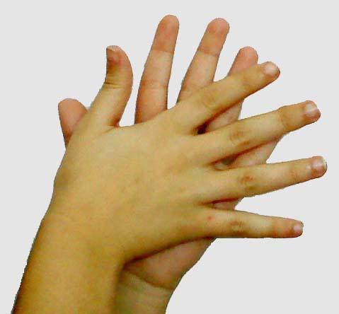 La lengua de signos española se habla con las manos
