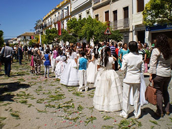 Imagen de la procesión del Corpus en La Roda
