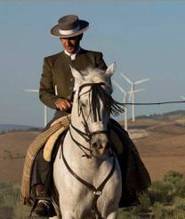 Caballista en los campos de Osuna. Foto: Francisco Aguilar.