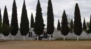 Cementerio municipal de Casariche