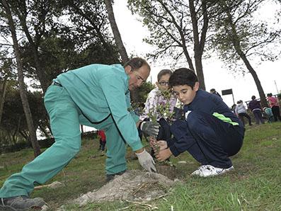 Niños de Estepa plantando un árbol con la ayuda de un jardinero municipal