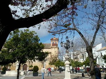 Plaza Mayor de Osuna. Foto: Reme Camero.