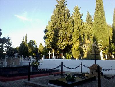 Vista del cementerio de Osuna, el pasado día 1 de noviembre