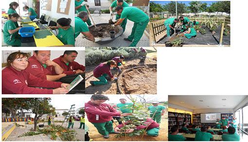 Distintos momentos del trabajo desarrollado por los alumnos-trabajadores del taller de empleo loreño.