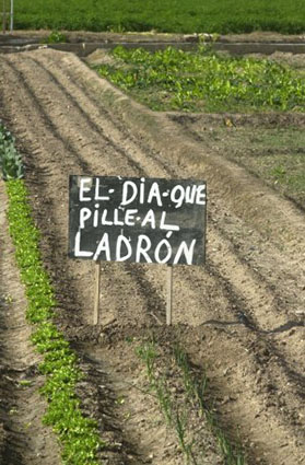 Imagen del aviso de un agricultor valenciano, foto del 2013 publicada en el diario Las Provincias.