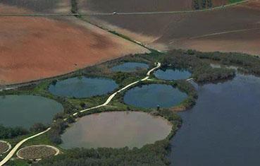 Vista parcial de la Laguna del Gobierno de Lantejuela.